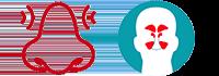 Infinite Progress Nutrition - Therapies - Sinus Problems